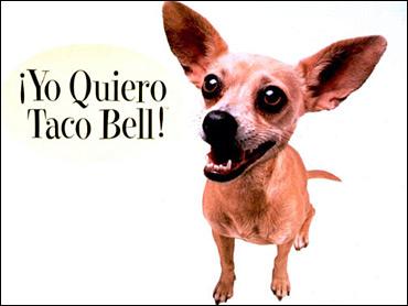 Taco Bell - Gidget