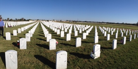 Picture taken at Fort Sam Houston National Cemetery, where my Mom is buried.